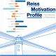 Reiss Motivation Profile - odkryj swój unikalny profil 16 motywatorów